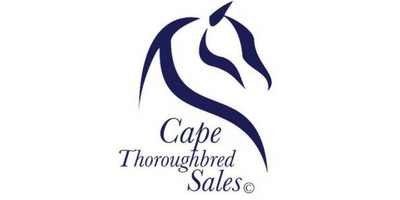 Cape thoroughbred Sales 400x200